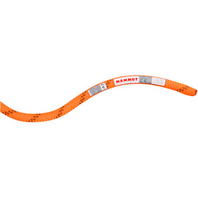 Mammut 8.0 Alpine Dry Rope 60m, safety orange-boa